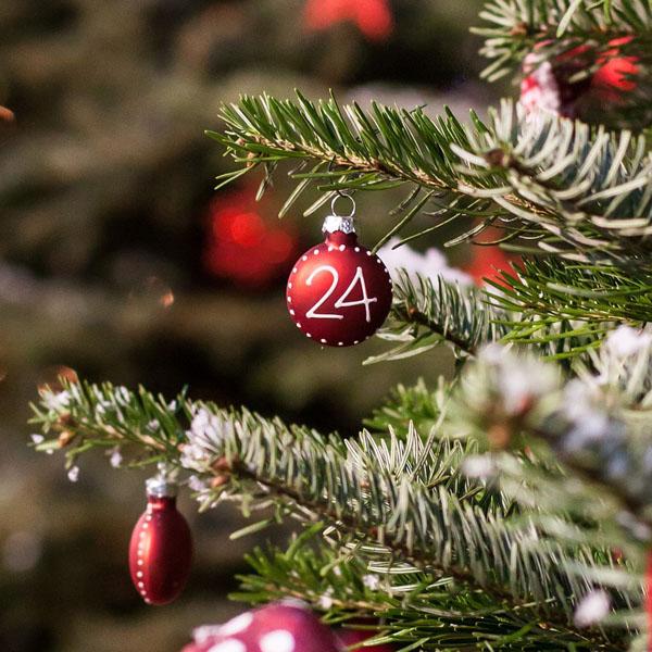 advent advent weihnachtszeit in n rnberg stadtportal. Black Bedroom Furniture Sets. Home Design Ideas